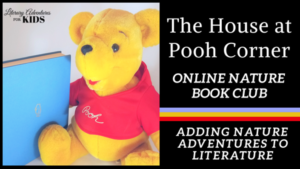 house at pooh corner book and bear